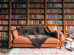 background-biblioteca
